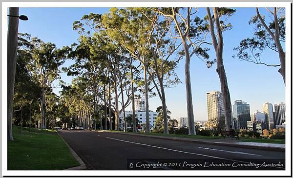 Kings Park - West Perth 20110510 (8).jpg
