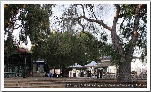 Kings Park - West Perth 20110510 (12).jpg