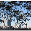 Kings Park - West Perth 20110510 (9).jpg
