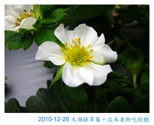 IMG_2544.jpg