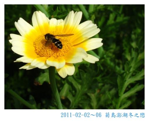 IMG_6400.jpg