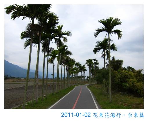 IMG_2911.jpg