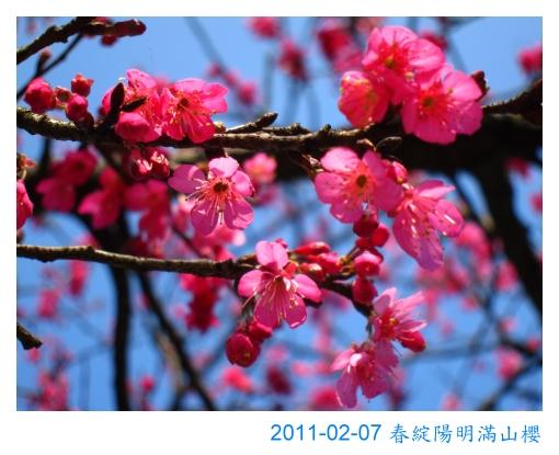 IMG_7201.jpg