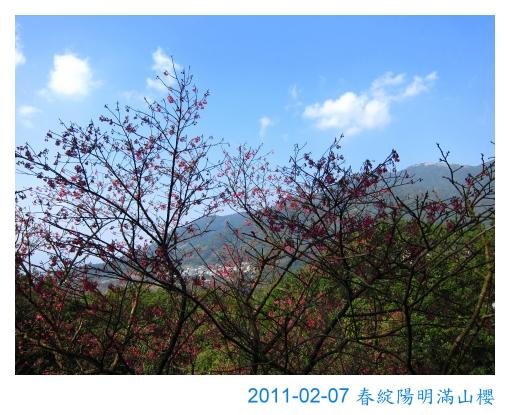 IMG_7339.jpg