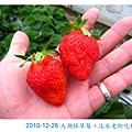 IMG_2555.jpg