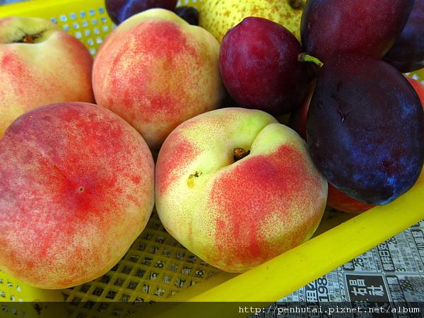 第一道菜 武陵農場水蜜桃