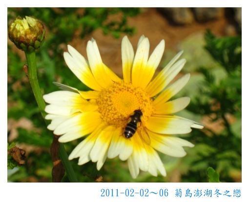 IMG_6397.jpg
