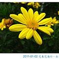 IMG_3821.jpg