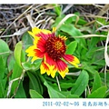 IMG_5533.jpg
