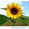 IMG_3477.jpg