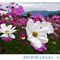 IMG_3784.jpg