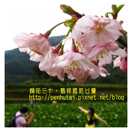 IMG_1827.jpg