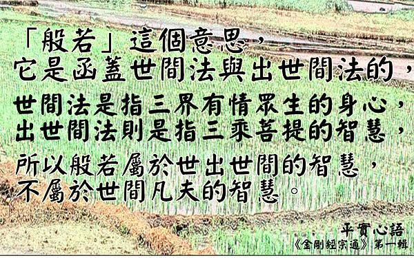 ♥平實心語~般若函蓋世間法與出...