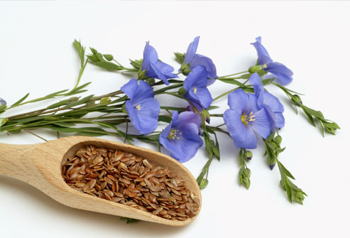flower and seeds.jpg
