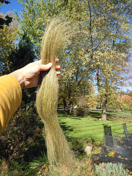 combed flax ready to spin 7