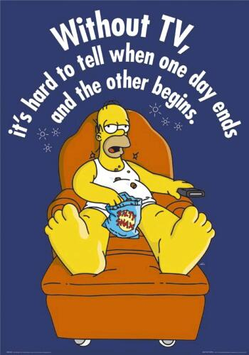 simpsons-the-homer-tv-4900921.jpg
