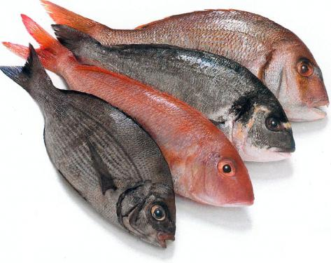 wholefish.jpg