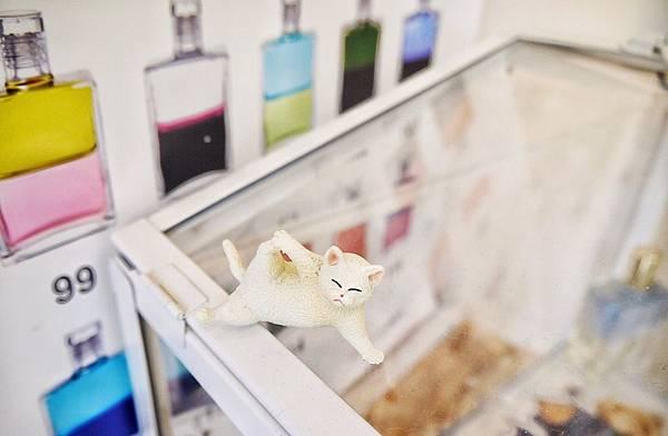 Cat I cake_191202_0049.jpg