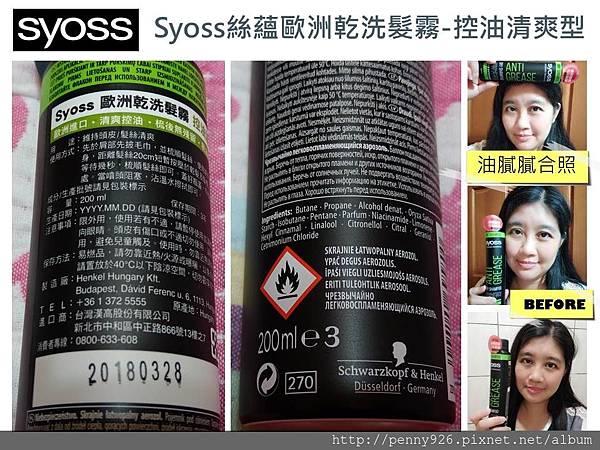Syoss4.JPG