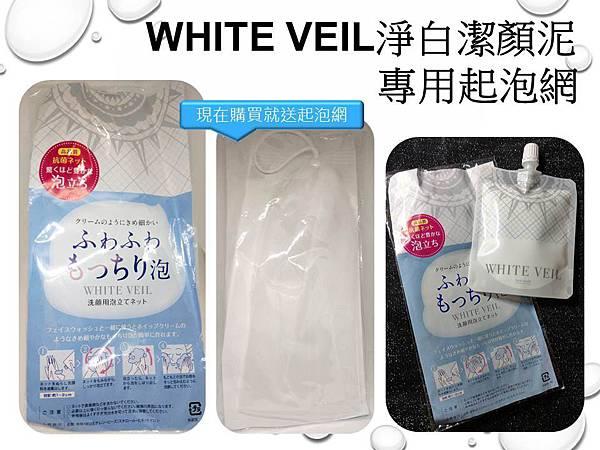 WHITE VEIL3.JPG