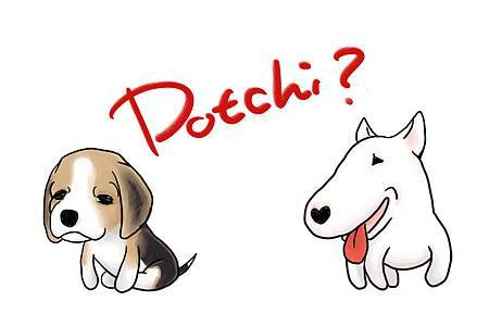 Dotchi Dog.JPG