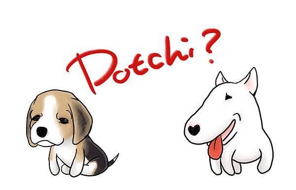 Dotchi Dog.JPG