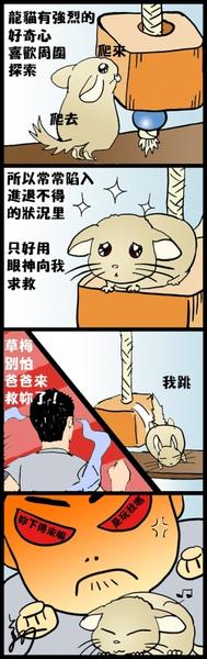 龍貓日記8