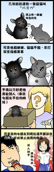 龍貓日記9