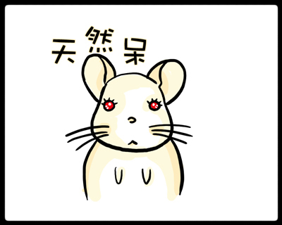 Chinchilla Diary 14-1.jpg