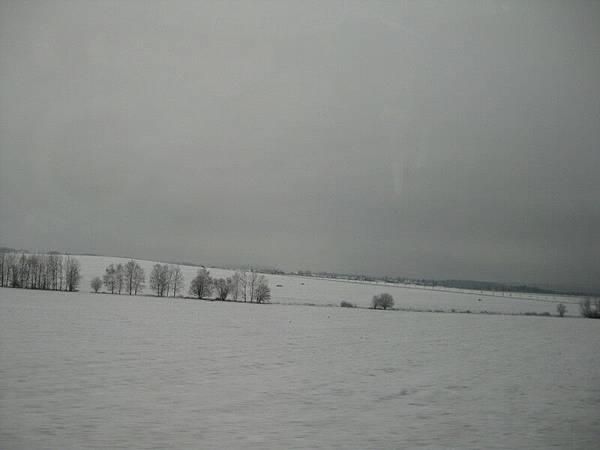路上都是雪白一片