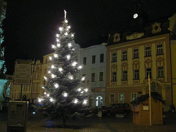 飯店前的聖誕樹