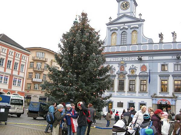 到處都有聖誕樹