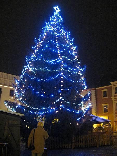 聖誕樹AGAIN