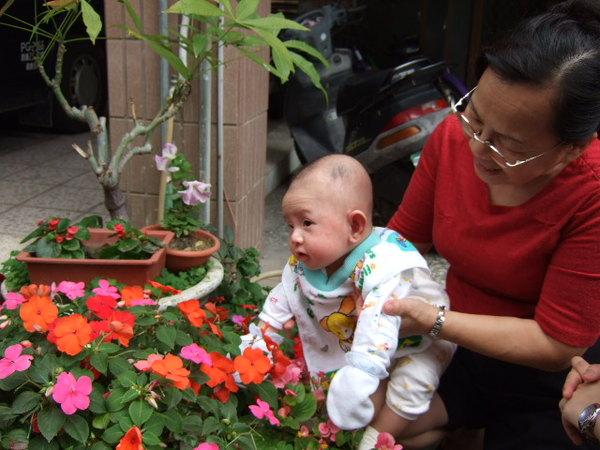 阿媽帶我去看花