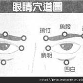 眼睛穴道圖