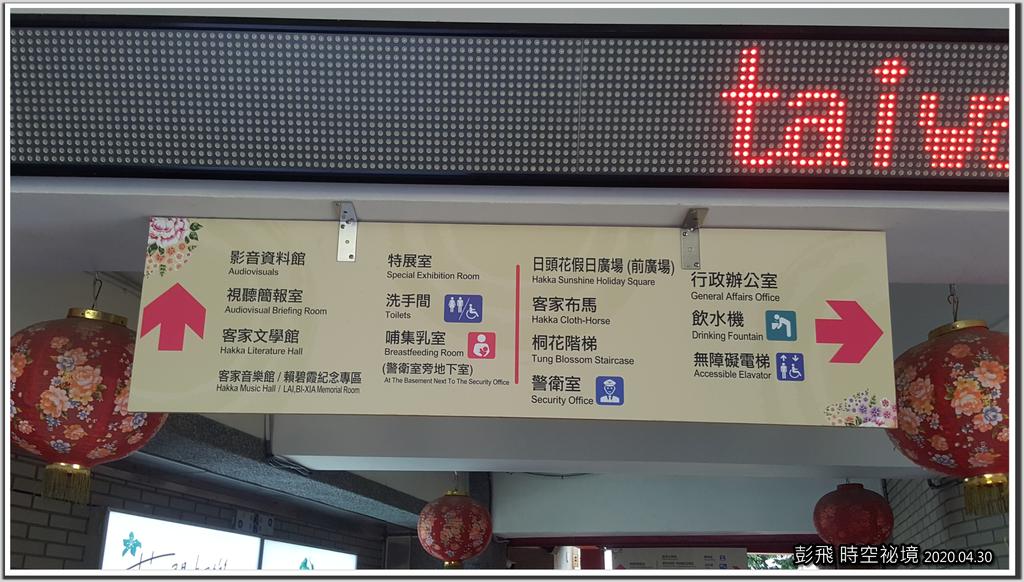 桃園【龍潭客家文化館】賞油桐花。