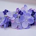 紫色繡球組花