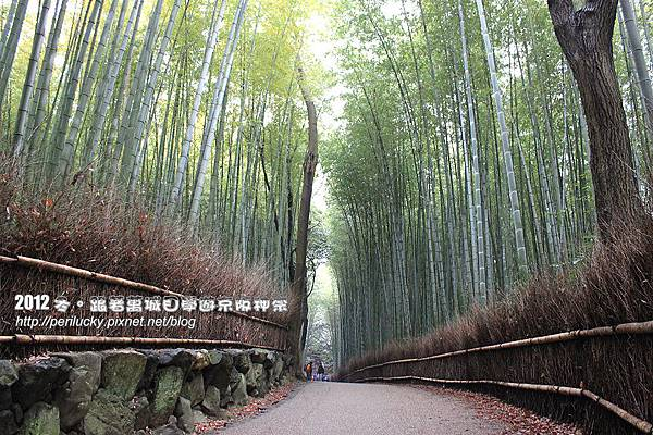 38.竹林步道