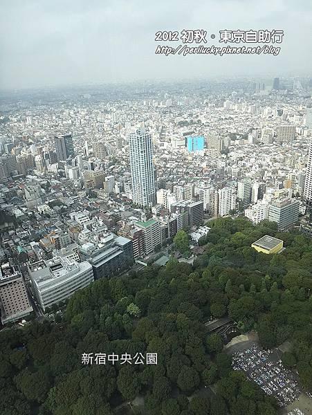 18.新宿高層大樓群