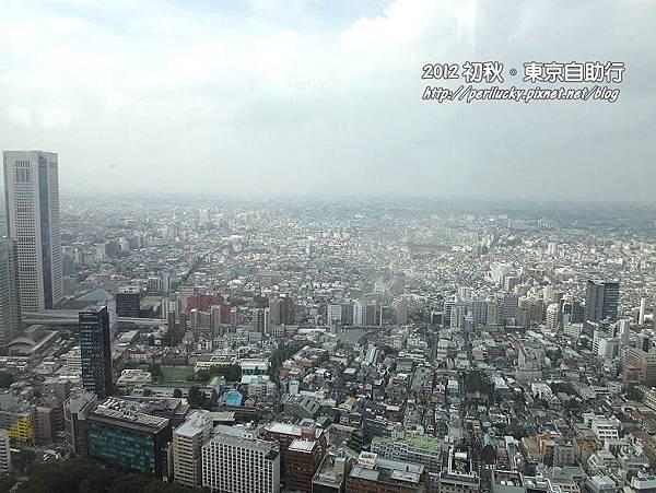 17.新宿高層大樓群