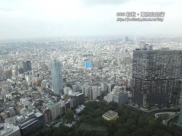 22.新宿高層大樓群