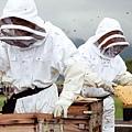 5.杉養蜂園企業簡介(養蜂)-01(2)
