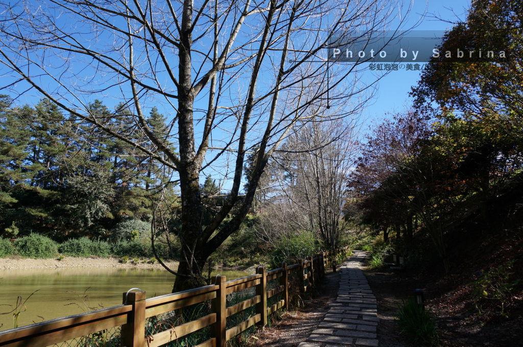 24.環湖步道