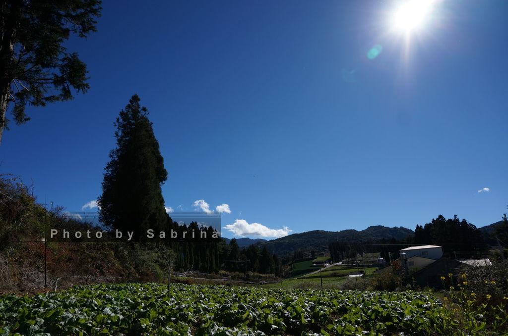 25.福壽山農場