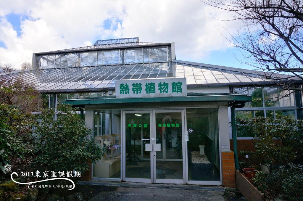 10.熱帶植物館