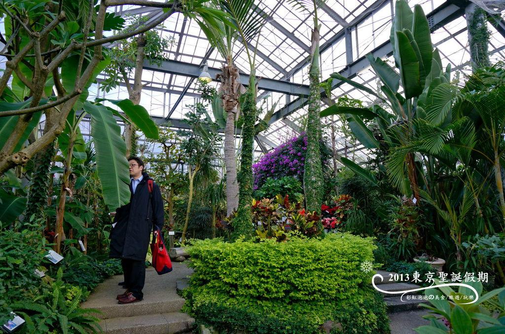 12.熱帶植物館