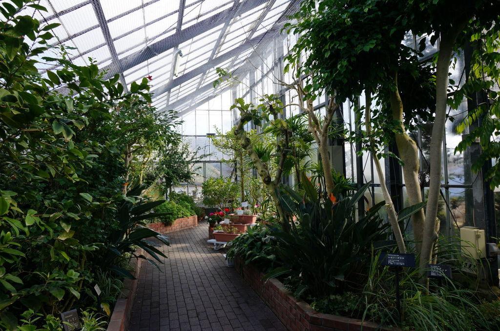 23.熱帶植物館