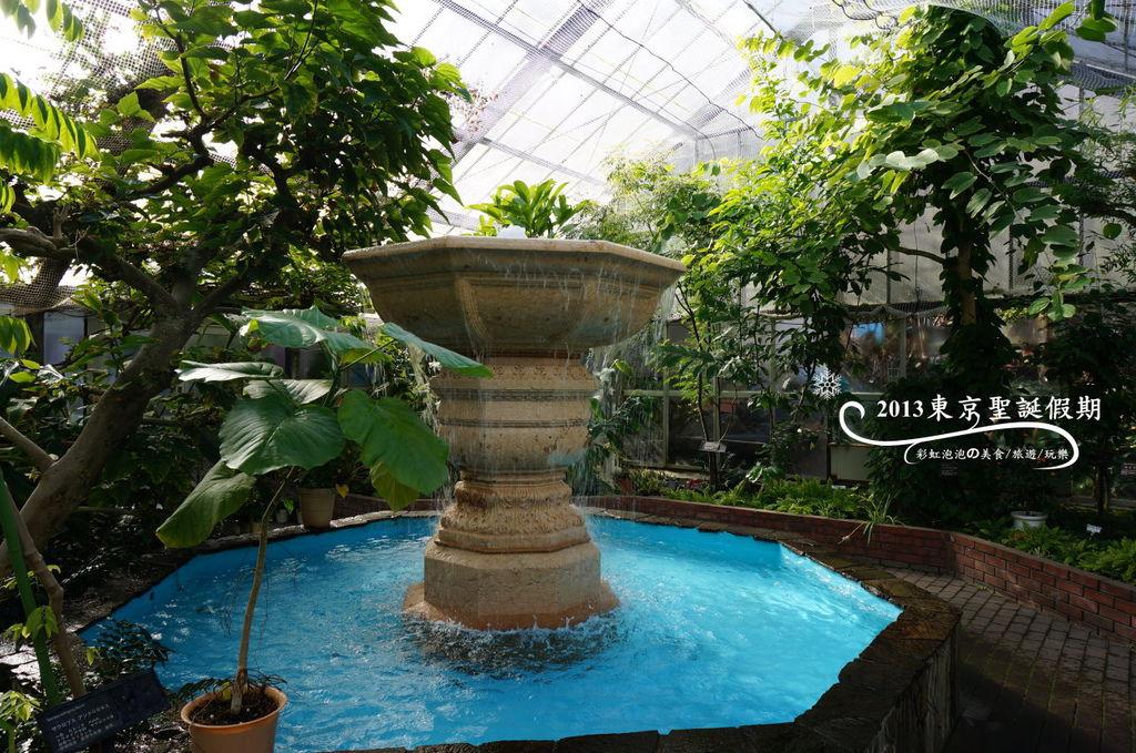 22.熱帶植物館