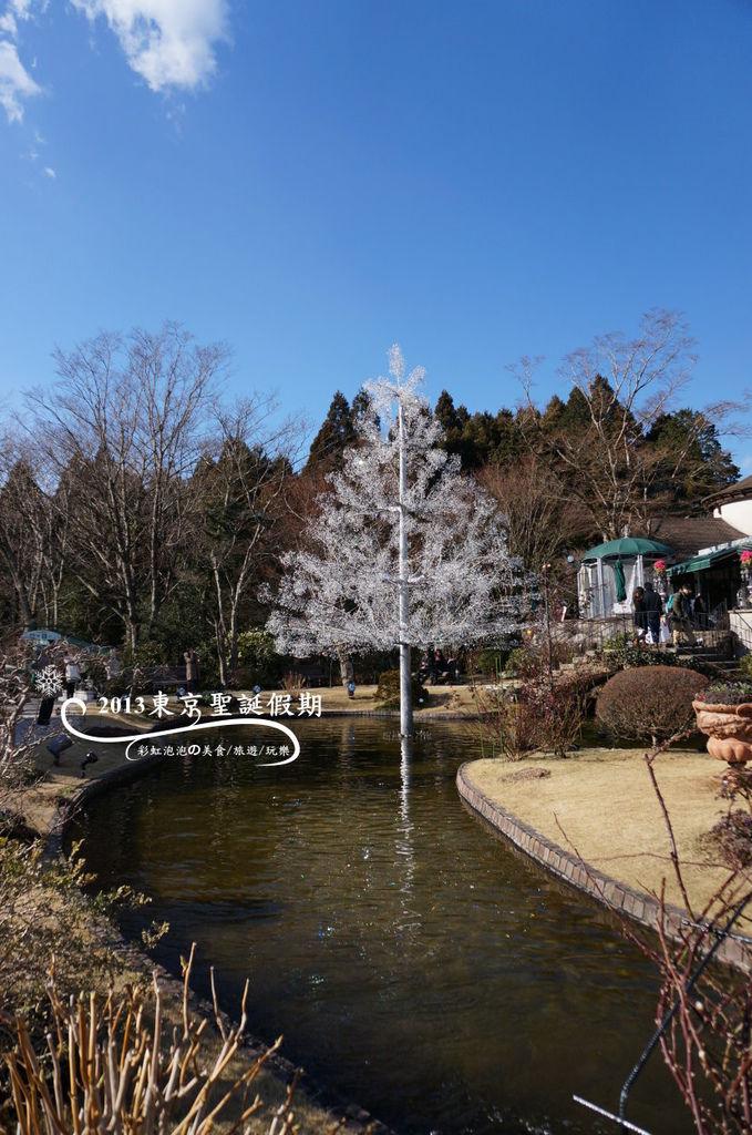 63.箱根玻璃之森美術館-聖誕樹