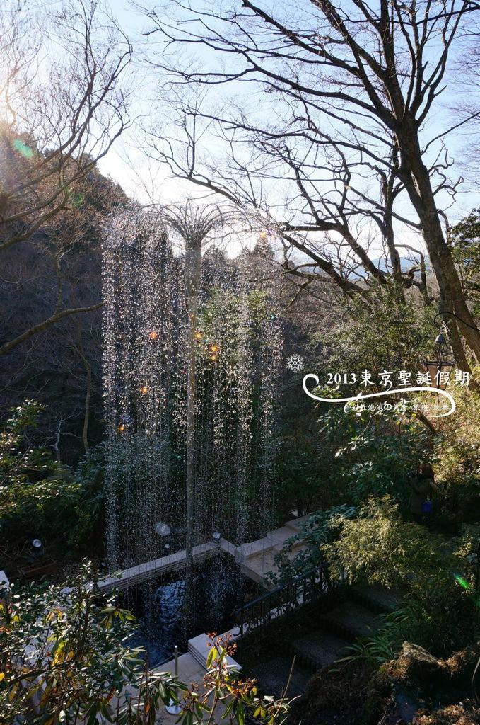 70.噴泉樹